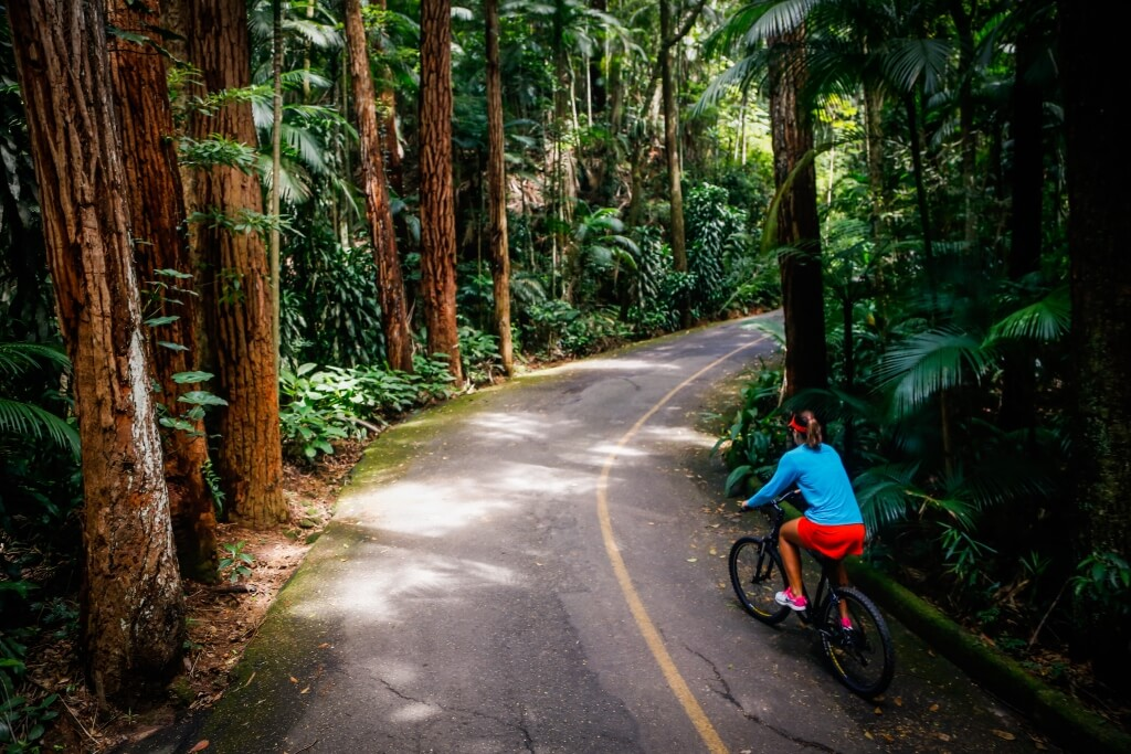 full_jungle_adventure_bike_tour_cycling_uphill