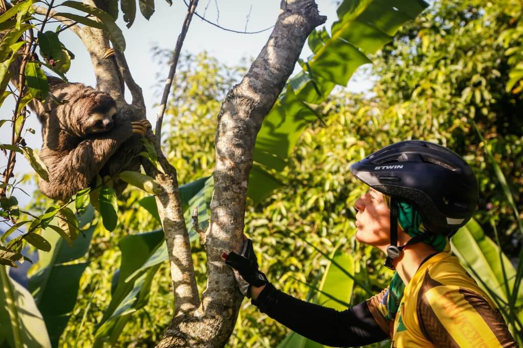 rio_jungle_bike_tour-animals_of_tijuca_forest